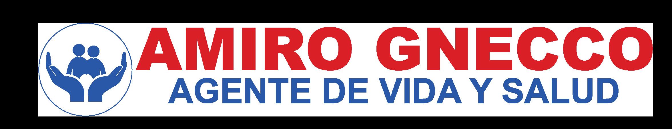 AMIRO GNECCO